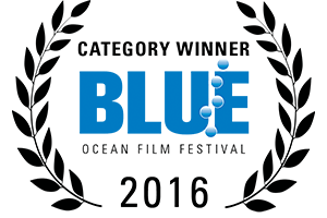 Award winning film production, Blue ocean film festival category winner laurels