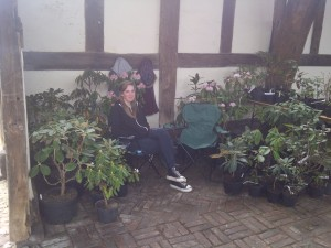 plants etc 019