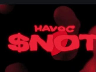 ALBUM: $NOT – Beautiful Havoc Zip Download