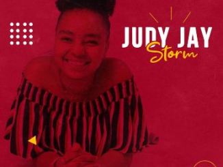 Judy Jay After The Storm Mp3 Download