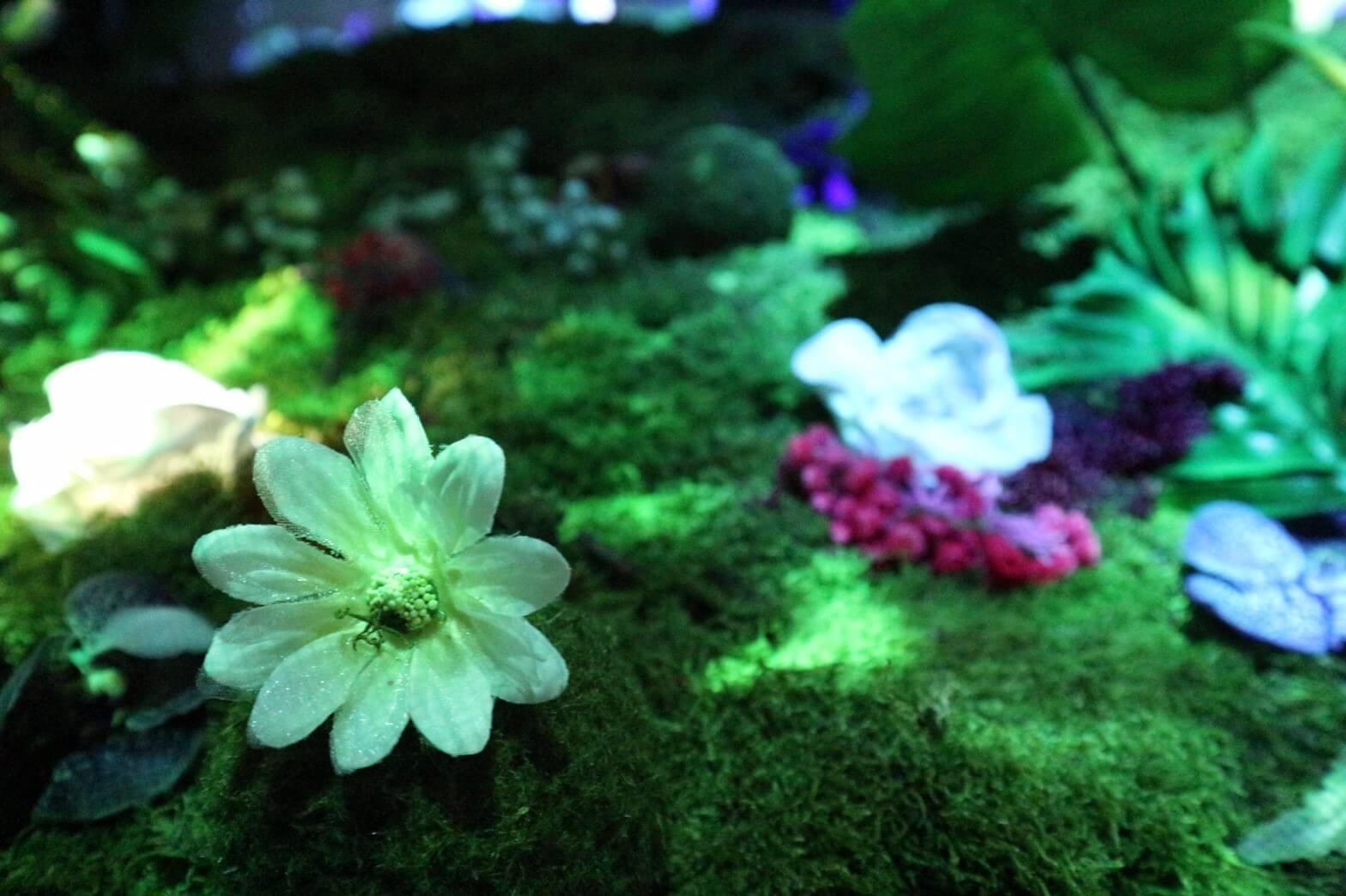 flowers by naked 六本木_3915