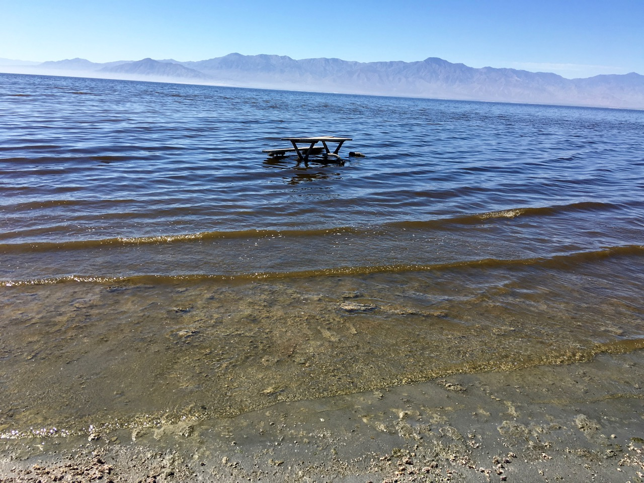 Picnic table in the Salton Sea
