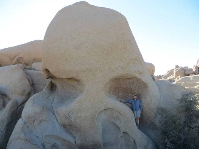 Man standing in eye socket of a rock that looks like a skull in Joshua Tree
