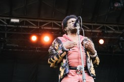 Charles Bradley and his Extraordinaires by Knar Bedian