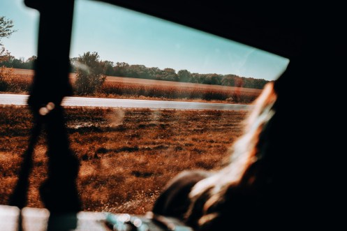 Cruising through rural Iowa, cornfields form walls miles long down the roadside.