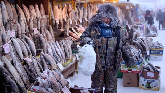 A-local-woman-holds-an-arctic-hare-on-sale-along-with-her-stock-of-frozen-fish-in-the-central-market-of-Yakutsk.-Welcome-to-The-Coldest-Place-Inhabited-By-Humans-on-Earth