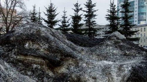 zapada neagra siberia
