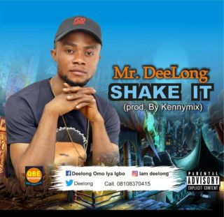MR Deelong - Shake It