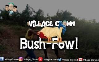 Village Clown - Bush Fowl