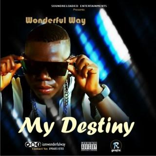 Wonderful Way - My Destiny