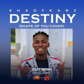 Shadykarz - Destiny