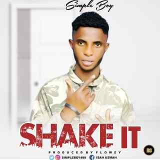 Simple Boy - Shake It