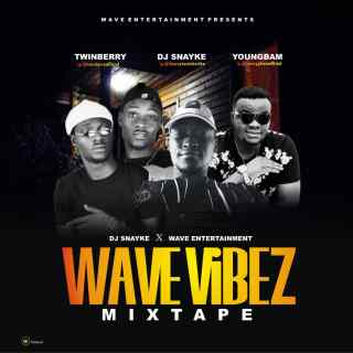 DJ Snayke x Wave Entertainment - Wave Vibez Mix