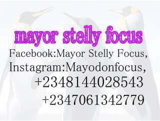 [Video] Mayor Stelly Focus - Nobody Perfect