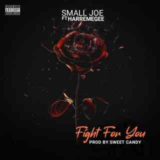 Small Joe ft. Harremgee - Fight For You