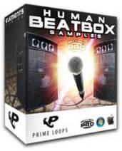 Human-Beatbox-Samples-Pro