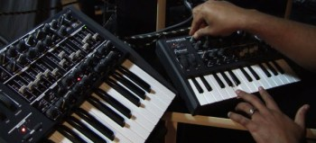 Arturia MiniBrute and MicroBrute sequencing, modulation, and tweaking