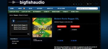 Big Fish Audio Modern Roots Reggae library review