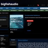 Big Fish Friday: Origin Sound Fundamental Ambience