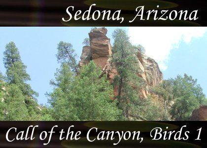 SoundScenes - Atmo-Arizona - Sedona, Call of the Canyon, Birds 1