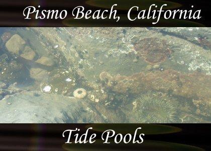 SoundScenes - Atmo-CA - Pismo Beach, Tide Pools