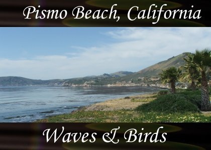SoundScenes - Atmo-CA - Pismo Beach, Waves and Birds