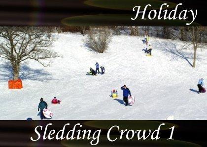 SoundScenes - Atmo-Holidays - Sledding Crowd 1