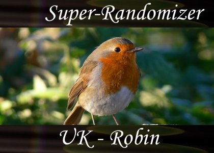 SoundScenes - Super Randomizer - Robin