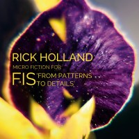 Rick Holland, Micro Fiction for Fis' From Patterns to Details LP