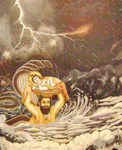 Krishna rescued over Yamuna