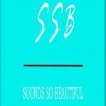 cropped-ssb-logo-blue15.jpg 3
