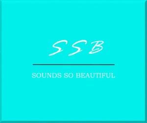 new ssb logo sounds so beautiful 3