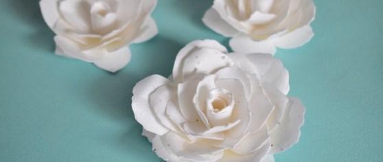 花咲くシードペーパーの花 – クラフトづくり
