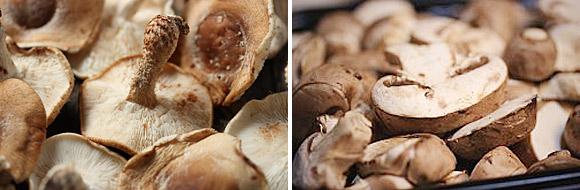 Mushroom Stroganoff 2