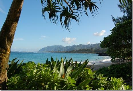 Hawaii 316