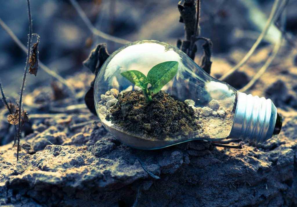 Ideias de negócios sustentáveis