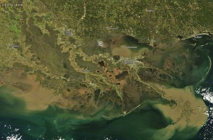 With the opening of the Bonnet Carre Spillway, millions of tons of rich river sediment passed through of Lake Pontchartrain and out to the Gulf of Mexico. (Photo: NASA Terra MODIS satellite)