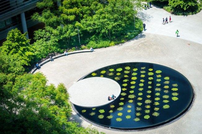 Hope Plaza