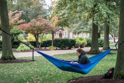 First-year student Clara Richards enjoys the outdoors while working Oct. 19 from her hammock near Graham Chapel. (Photo: Whitney Curtis/Washington University)