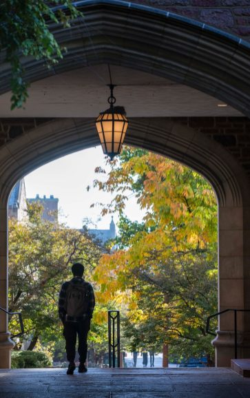 A view of fall foliage through the Sever Hall archway Oct. 22 on the Danforth Campus (Photo: Joe Angeles/Washington University)