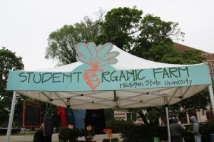 The Student Organic Farm provides vegetables to the Greater Lansing community and beyond.