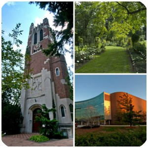 There are lots of opportunities to see different areas of MSU's campus.