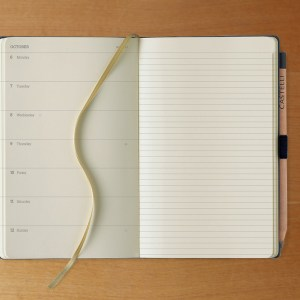 Diaries Calendars Journals