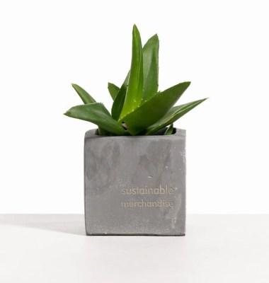 Sustainable Employee Gift Ideas – Clay Pot Garden