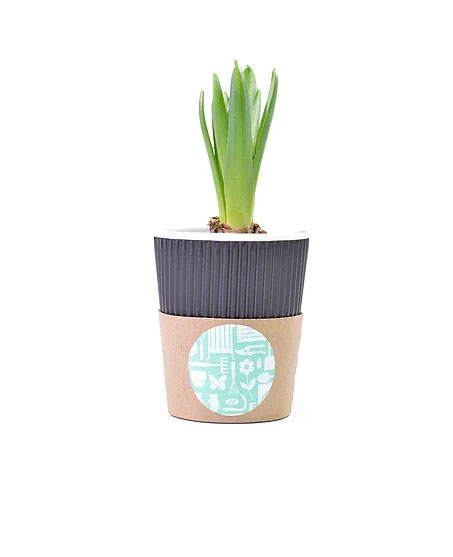 Promotional Garden Cup Branded with Logo