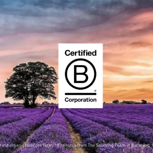 The Sourcing Team are delighted to become certified B Corp building on our ethical and sustainable heritage