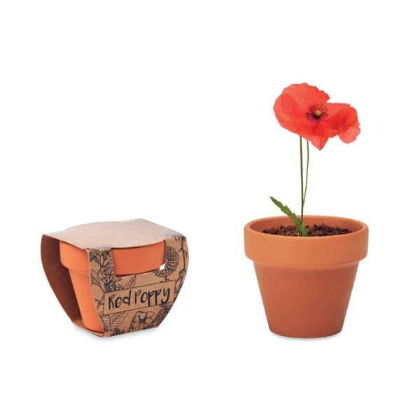 Terracotta Pot Branded with Logo
