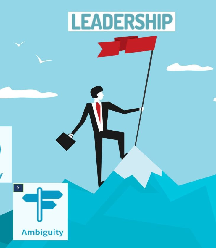 leadership in VUCA world