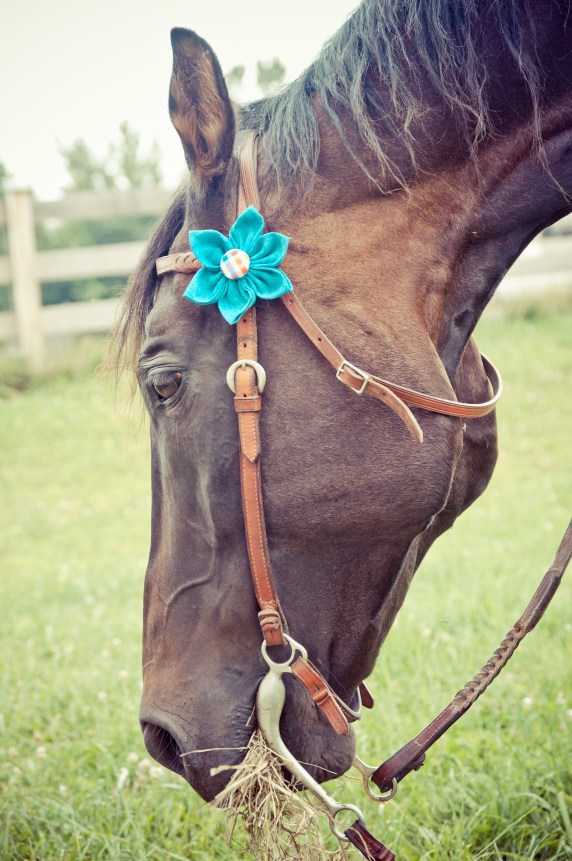 Flower Adornment for Pet Collar