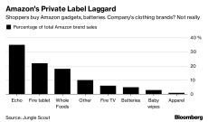 Amazon Branded Women's Apparel Sales Languish, Report Finds